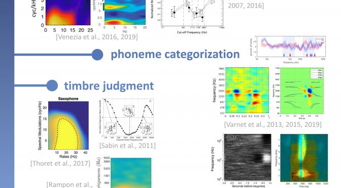A visual compendium of auditory revcorr studies